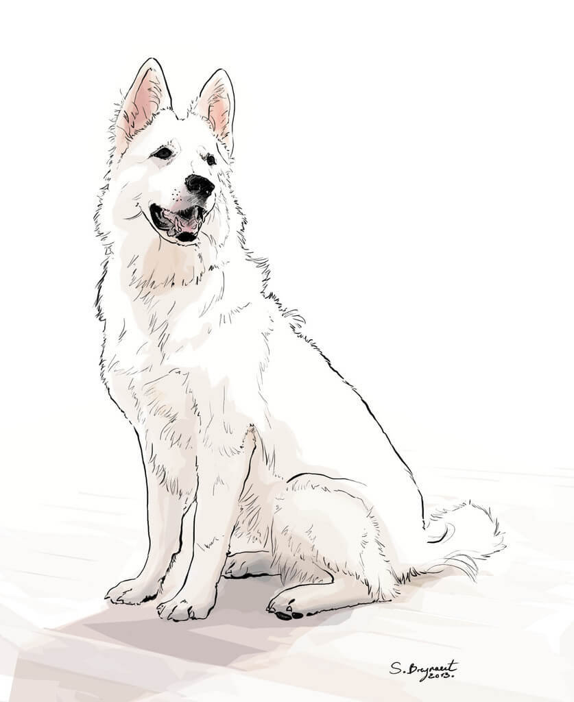 bre-20140930-chien-07